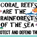 Coral Reefs Rainforests