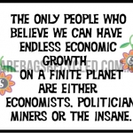 Endless Growth Insanity
