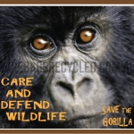 Care Defend Gorilla