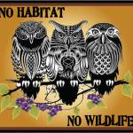 Owls No Habitat No Wildlife