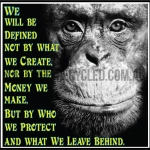 Chimp Defined Leave Behind