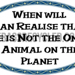 Not only Animal on Planet