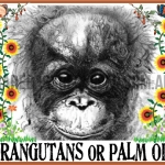 Orangutans or Palm Oil