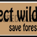 Protect Wildlife Save Forests