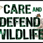 Care and Defend Roo