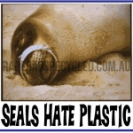 Seals Hate Plastic