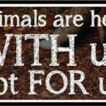 Animals with us