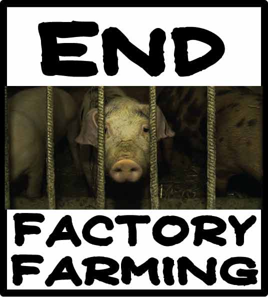end-factory-farming2