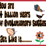 Evolutionary Success no swear