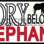 Ivory Belongs to Elephants