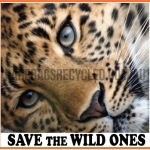 Save the Wild Ones Leopard