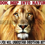 Lion Deep into Nature
