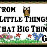 Little Things Big Things