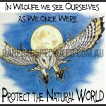 Owl Swooping Protect Natural World