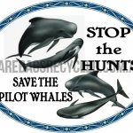 Save the Pilot Whales