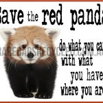Save the Red Panda