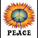 Peace sunflower