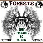 Forests Breathe Lungs