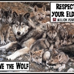 Respect Elders Wolf Pack